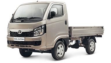Tata Intra v10 Grey Colour